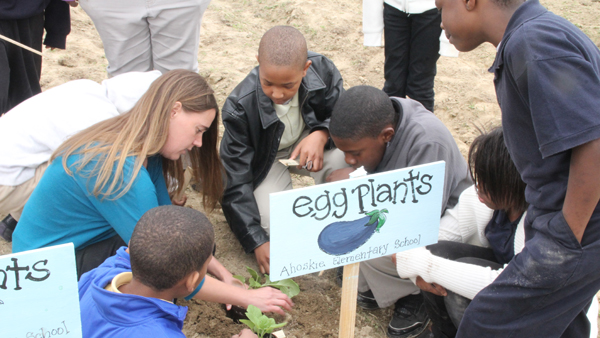 A handful of Ahoskie Elementary School students join with a teacher to place an eggplant in the soil of a community garden adjacent to the SECU office in Ahoskie. Staff Photo by Cal Bryant