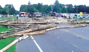 Logs are strewn across the highway near the intersection of US-13 and Center Grove Road, the scene of a fatal wreck that occurred Tuesday evening between a passenger vehicle and a tractor-trailer. Contributed Photo