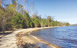 A section of Albemarle Sound frontage is shown on the former Brown Brothers property that Bertie County purchased and plans to develop.   Contributed Photo