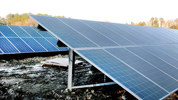 Solar panels are now being installed in this area of Woodland, located behind the old Shrimp Feast site off US 258. Town officials have approved three solar farms, but rejected a fourth. | Staff Photo by Keith Hoggard