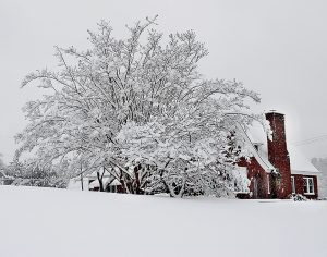 This photo, taken in late December of 2010, shows 12 inches of snow that fell in Ahoskie. Weather forecasters are saying a similar storm is shaping up to impact the local area and the entire region on Friday night into Saturday. File Photo